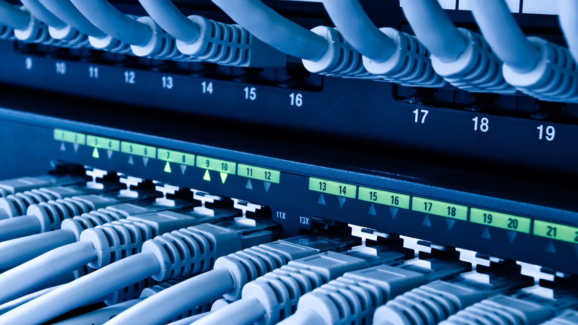 Blue-Network-Cables-Switch-Rack-Cabling-LAN-RJ45-Lead-Server